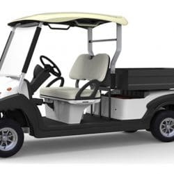 electric resort utility vehicle